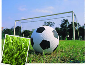 Artificial Turf for Football