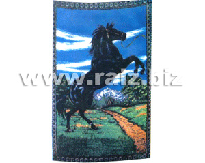 Polar Fleece Blanket with Horse Printed pictures & photos