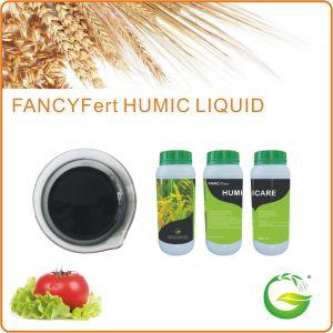 Liquid Organic Foliage Spray Fertilizer pictures & photos