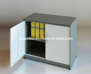 Steel Swing Door Office Filing Cabinet (SV-SW0735) pictures & photos