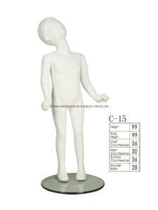 Children Model Displays (C-15)