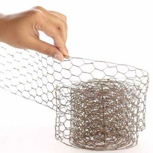 China 2016 Hot Sale Hexagonal Chicken Wire Fencing Roll pictures & photos