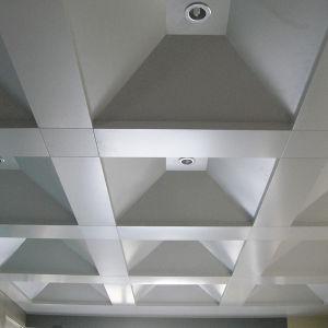 Fashionable Irregular Aluminum Ceiling pictures & photos