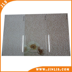 250*500mm Special Size Wall Tile Inkjet Water Proof Tile pictures & photos