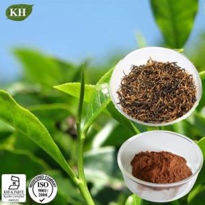 Polyphenols 25%, 40% Black Tea Extract pictures & photos