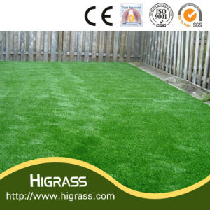 High Density Economic Type Garden Landscaping Artificial Lawn pictures & photos