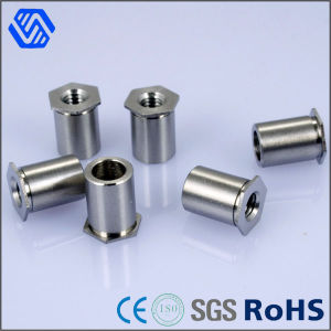 Aluminum Weld Nut Male and Female Rivet Nut pictures & photos