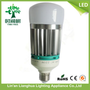 New Design Hot Sales 22W LED Light Bulb with Ce RoHS pictures & photos