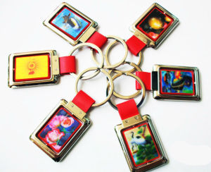 Wholesale Custom Design Lenticular 3D Keychain pictures & photos