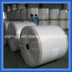 100g Fiberglass Surfacing Facing Mat pictures & photos