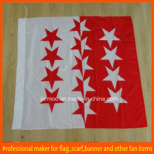 Colorful Foldable School Flag Banner pictures & photos