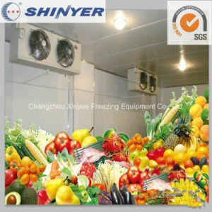 Customized Cold Storage for Fruits and Vegetables pictures & photos
