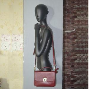Fiberglass Female Mannequin, Torso Mannequin for Bag Display pictures & photos