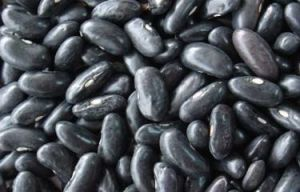 New Big Black Kidney Bean pictures & photos