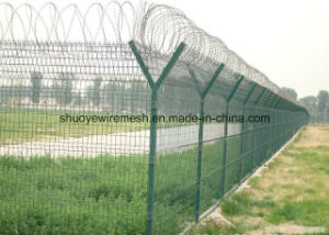 Galvanized Razor Barbed Wire Mesh Fencing pictures & photos