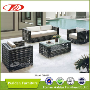 Big Rattan Woven Outdoor Furniture Dh-821 pictures & photos