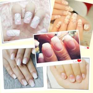 Private Label White Lace 3D Mix Design Nail Art Sticker pictures & photos