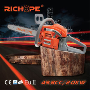 Chain Saw (CS5060) pictures & photos