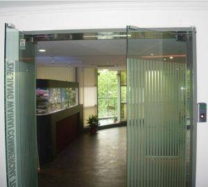 Automatic Glass Swing Door Opener (SW100) pictures & photos