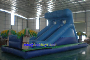 Newest Design Inflatable Castlewith Slide for Sale (A024)