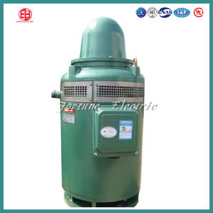 IEC IP55 H Insulation 40HP Three Phase Induction Motor pictures & photos