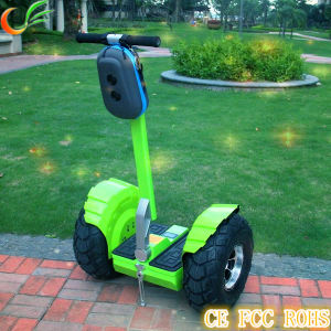 China Factory Cheap China Electric Chariot for Kids pictures & photos