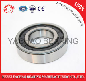 Cylindrical Roller Bearing (N219 Nj219 NF219 Nup219 Nu219) pictures & photos