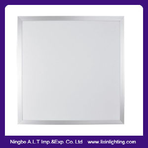 Big Slim LED Panel Light in Size of 6060 &30120 pictures & photos