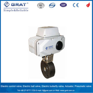 Electric Control Ball Valve pictures & photos