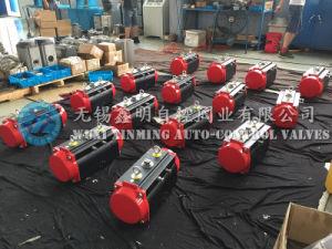 Black Anodized Aluminum Pneumatic Actuator for Valve (CE, ATEX, ISO, SGS) pictures & photos