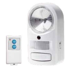 Induction Light with PIR Alarm System pictures & photos