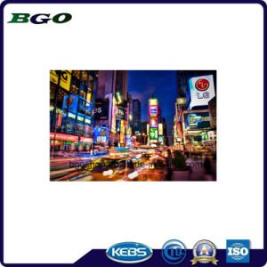 PVC Flex Banner Backlit Digital Printing 200dx300d 18X12 260g) pictures & photos