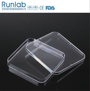 CE Approved 130*130mm Disposable Plastic Square Culture Petri Dish pictures & photos