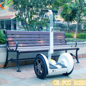 Electric Vehicle of Golf Cart with 2 Seater Self Balance pictures & photos