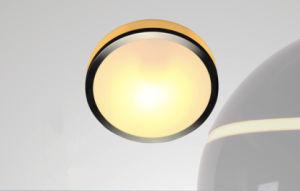 G9 40W Zhongshan Guzhen Glass Metal Panel Lamp for Balcony pictures & photos