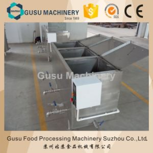 SGS Gusu Chocolate Machinery Fat Melting Machine Ryg-3 pictures & photos