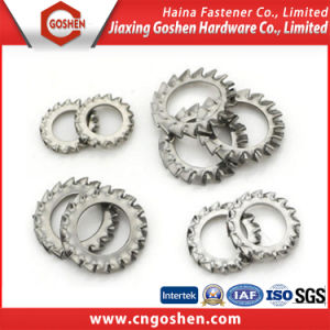 Stainless Steel High Pressure External Serrated Nord Lock Washer pictures & photos