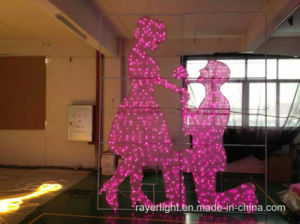 LED Christmas Curtain Light Wedding Light Decoration pictures & photos