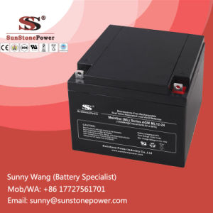Rechargeable UPS Batteries AGM Battery 12V 24ah pictures & photos