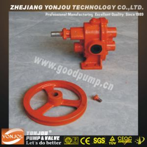 Bp Belt Pulley Driven Gear Pump and Weak Acid pictures & photos