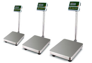 Bench Scales and Checkweighers Platform Scales