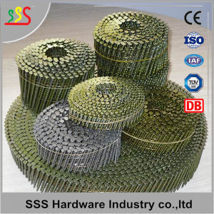 High Quality Free Sample Common Coil Nail Export Hot