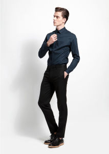 Slim Fit Non-Iron Dress Shirt pictures & photos