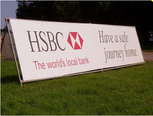 Outdoor Flex Vinyl Banner for Bank Advertising pictures & photos