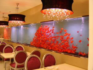 Beautiful Acrylic Fish Tank Made in China pictures & photos