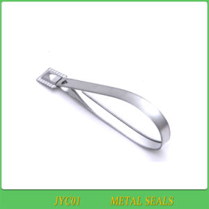 Metal Seals, Metal Locks., High Security Metal Seals (JYC01) pictures & photos
