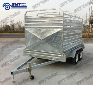 Livestock Trailer by Tractor (SWT-CCT85) pictures & photos