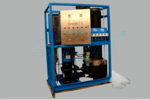 Cube Ice Making Machine Replaced by Tube Ice Maker