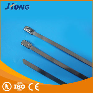 4.6 X 600mm UL Self-Locking Ss Cable Ties pictures & photos