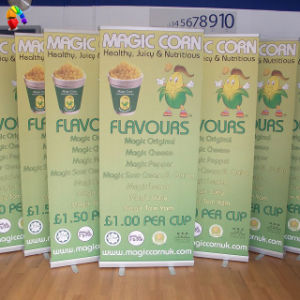Pull up Banner Stand, Retractable Banner Stand, Roller Banner pictures & photos